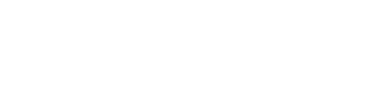 Mesa Boogie / Engineering Logo